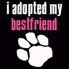 So many wonderful dogs can be adopted from shelters or animal rescues--even specific breeds! Please, don't shop, adopt!