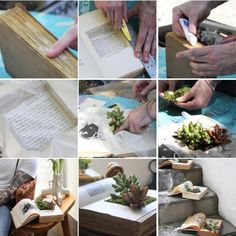 Book Planters.