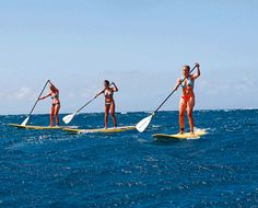 Stand up paddle surfing is a relatively new watersport craze that has ...