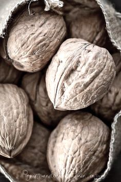 we'll have windfalls of walnuts for nut pies and zucchini breads