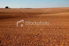 Spanish field in winter Royalty Free Stock Photo