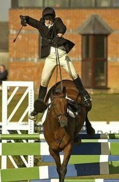 a4899c08e 63 Best Horse Jumps   Cavaletti images