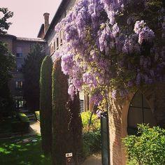 La magia dei giardini italiani: il Palazzo della Provincia a Ravenna - Instagram by livingravenna
