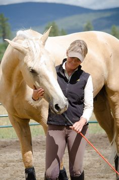 How to Improve Horse Behavior at Feeding Time