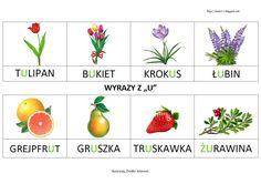 Polish Language, Tulip Bouquet, Grapefruit, Tulips, Strawberry, Education, Blog, Asd, Poland