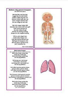 Sångkort om kroppen.