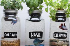https://www.realmoms.com/diy-self-fertilizing-aquarium-planters/