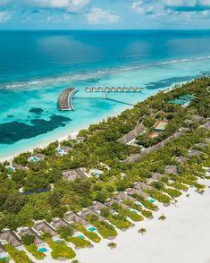 42 best maldives always natural images maldives the maldives rh pinterest com