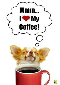 MMMMM!!! COFFEE!!! ;-) There is my Tinkerbell smelling her coffee.