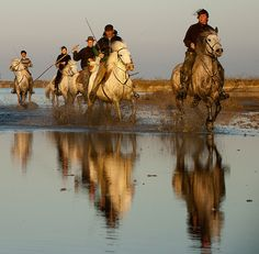 Gardians (Camargue Cowboys) Riding through Water with Reflections La Provence France, Paris France, Camargue France, Horse Adventure, Moustiers Sainte Marie, Southern France, Photos Voyages, French Countryside, Vintage Travel Posters