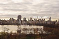 New York City Street Shooting -