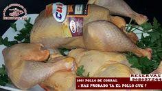 """¿conoces el pollo CUK? """"El pollo amarillo certificado, criado en granjas gallegas, con alimentos totalmente vegetales. Muy sabroso, con un sabor a los de antes."""" Pruébalo en La Balsa Redonda del Valle. ¿ te apetece a la brasa ? Reservas 968607244"""
