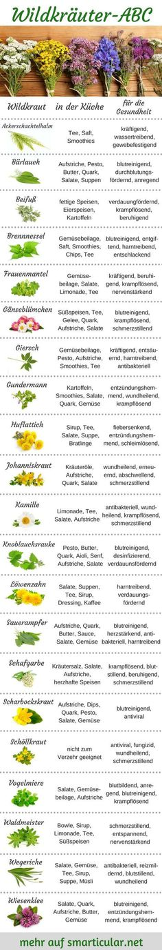 Wildkräuter-ABC: Pflanzen für Küche und Gesundheit vielseitig nutzen Wild herbs are available almost everywhere free of charge, it is more vital than many vegetables. How you can use them in the kitchen and for your health, you will find out here! Herb Garden, Vegetable Garden, Potager Bio, Kitchen Plants, Garden Types, Famous Last Words, Signature Cocktail, Garden Care, Winter Garden
