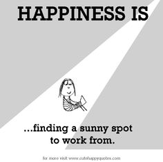 Happiness is, finding a sunny spot to work from. - Cute Happy Quotes
