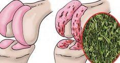 Врач натуропат рекомендует: простое средство для восстановления хрящей коленей, суставов и укрепления костей!