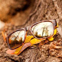 536196dabfd4d Carrera Sunglasses for Men and Women Aviators Retro Solstice - FourSunnies