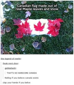 """20 Canada Day Memes In Honor Of America's Hat - Funny memes that """"GET IT"""" and want you to too. Get the latest funniest memes and keep up what is going on in the meme-o-sphere. Canadian Memes, Canadian Things, Tumblr Stuff, Funny Tumblr Posts, Funny Texts, Funny Jokes, Stupid Funny, Canada Day, Cool Countries"""