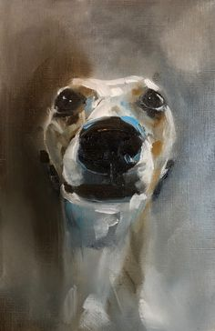 Whippet by Julie Brunn #whippet #dogs