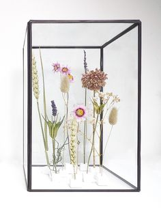 Interior Plants, Decor Interior Design, Simple Flowers, Dried Flowers, Flower Frame, Flower Wall, Craft Presents, Modern Led Ceiling Lights, Plant Projects