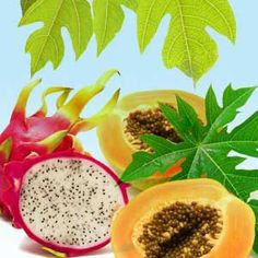 Papaya Dragon Fruit  Fragrance Oil- Best Slime Scents