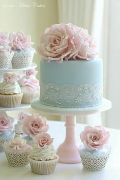 Beautiful light blue lace and pink roses cake