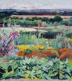 Sissinghurst Allotments with Courgettes   Louis Turpin