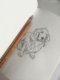 Miss u my doggy...