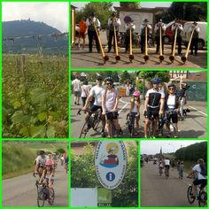 Ce dimanche ensoleillé était une journée parfaite pour faire la boucle à #velo de 31 km du #slowup version #alsace : traversée de #scherwiller. #chatenois , #kintzheim , #sainthypolite , #rorschwihr, #bergheim et #selestat . Même la mini a pédalé avec entrain dans le #vignoble ! #cyclisme #fandemonhomme #fandenumber1 #fandenumber2 #fandenumber3