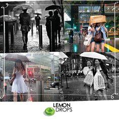 Danny começou a sair pelas ruas de Singapura e a captar as reações dos habitantes nos dias chuvosos.   O resultado vai desde caras aborrecidas pelo temporal, até as pessoas que sorriem e aproveitam o momento da chuva e ainda aquelas que ficam lindas até debaixo d'água   Quer ver mais fotos? Então acessa: http://www.dannyst.com/gallery/bad-weather/