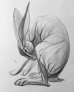 Monochrome graphite 8B. 21.02.17 #hare #coney #draw #sketch #man #sketching #drawing #pencil #draft #искусство #bw #graphic #drawingthesoul #ставрополь #рисунок #artlovers #sketches #illusration #artshelp #galleryart #pencildrawing #blackandwhite #igers #графика #artwork #pencilart #instaart #artist #sketchbook #art