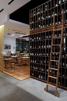 Wine wall & library ladder?