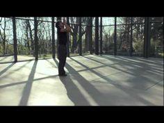 PINA 2011 (Rooftop- Luna de Margarita- Glasshouse) - YouTube