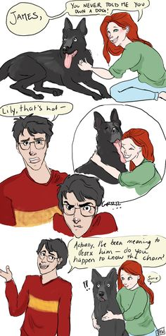 James, Lily and Sirius :) by http://vanscribbles.tumblr.com/