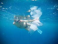 """Soverato Web on Twitter: """"#Soverato #Calabria #Sea @Soverato https://t.co/MfltHtfviS"""""""