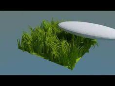 Blender grass dynamic
