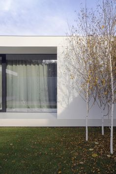 Gallery of Piano House / LINE architects - 39
