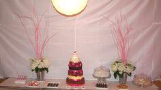 Table à gâteau et autres dessert, table de douceurs, hydrangés, branches roses, guimauves sur pailles roses, pretzels enrobés de yogourt sous cloches à gateau, chocolats, etc.