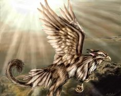 Gryphon Photo:  This Photo was uploaded by daydreamergirl87. Find other Gryphon pictures and photos or upload your own with Photobucket free image and vi...