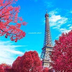 Paris is always a good idea ✨❤️❤️✨ Picture by ✨✨@Hannah Alzaim✨✨ Good afternoon all  #Padgram