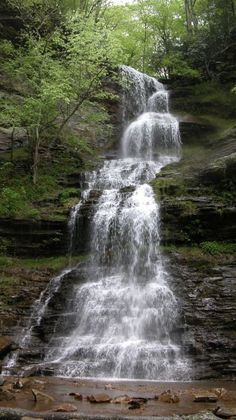 Cathedral Falls is one of West Virginia's highest and most scenic waterfalls.