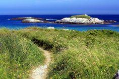 kejimkujik seaside, nova scotia  The water looks exactly like this...