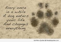 Dog-enters-your-life-quote-lovely-cute-puppy-love-animals-pics-sayings . #dogquoteslove