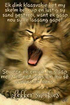 Gud Afternoon, Goodnight Quotes Sweet, Out Of Office Message, Good Night Sleep Tight, Goeie Nag, Afrikaans Quotes, Phone Messages, Good Night Image, Good Night Quotes