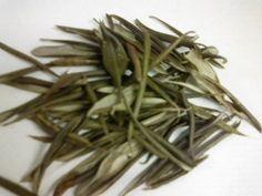 O chá de oliveira é poderoso e possui diversos benefícios, como emagrecer e tratar a hipertensão. Conheça mais detalhes de suas propriedades medicinais.