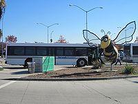 Norwalk - Transit Bus and Bee Norwalk California, California City, My Side, Cities, Bee, Traveling, Viajes, Honey Bees, Bees