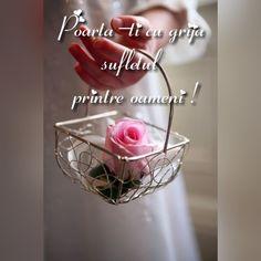 Happy Weekend, Glass Vase, Words, Quotes, Hip Bones, Belle, Profile, Qoutes, Quotations