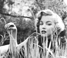Marilyn Monroe photographed by Don Ornitz.