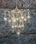 thestrawshop.com/...                       Halmkrona, Oro, Himmel, Himmeli, Straw Crown by Per-Åke Backman, Sweden. Foto Lennart Edvardsson Winter Ligth Collection model G