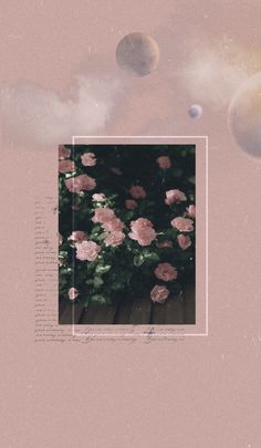 Flower Desktop Wallpaper, Et Wallpaper, Drawing Wallpaper, Iphone Wallpaper Tumblr Aesthetic, Iphone Background Wallpaper, Aesthetic Pastel Wallpaper, Tumblr Wallpaper, Aesthetic Wallpapers, Flower Aesthetic