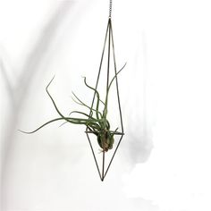Freestanding Hanging Metal Triangular Shape Tillandsia Air Plant Rack Geometric Himmeli Sculpture (HEIGHT 18CM) => Discover this special product, click the image : home diy yard